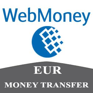 Vpayment | شارژ وب مانی - یورو ، با کمترین نرخ شارژ ، کوتاه ترین زمان